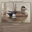2010-2011 Federal Duck Stamp Flyer